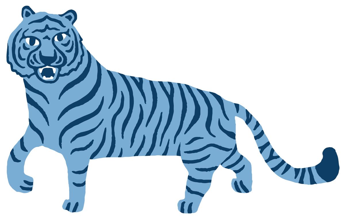 Nividas_Hedda_tiger